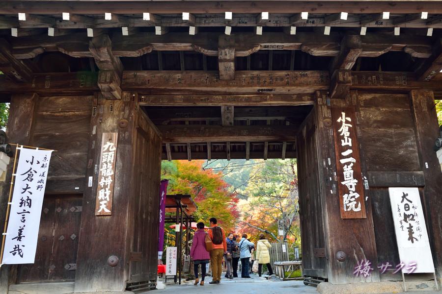 京都15(1)変更済