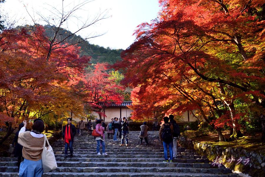 京都15(2)変更済
