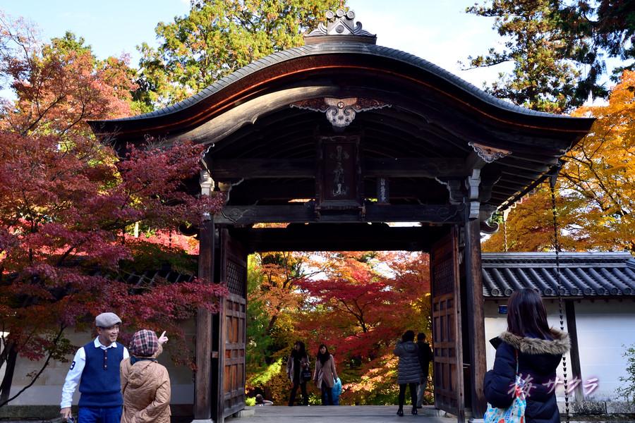 京都15(8)変更済