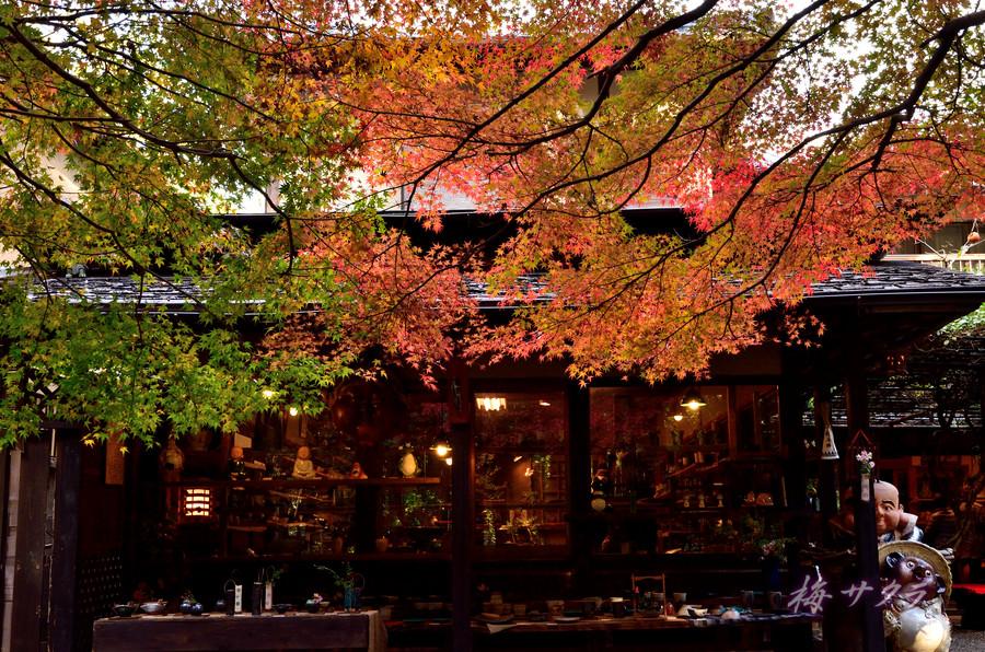 京都15(10)変更済