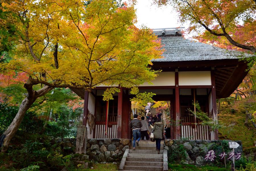 京都16(2)変更済