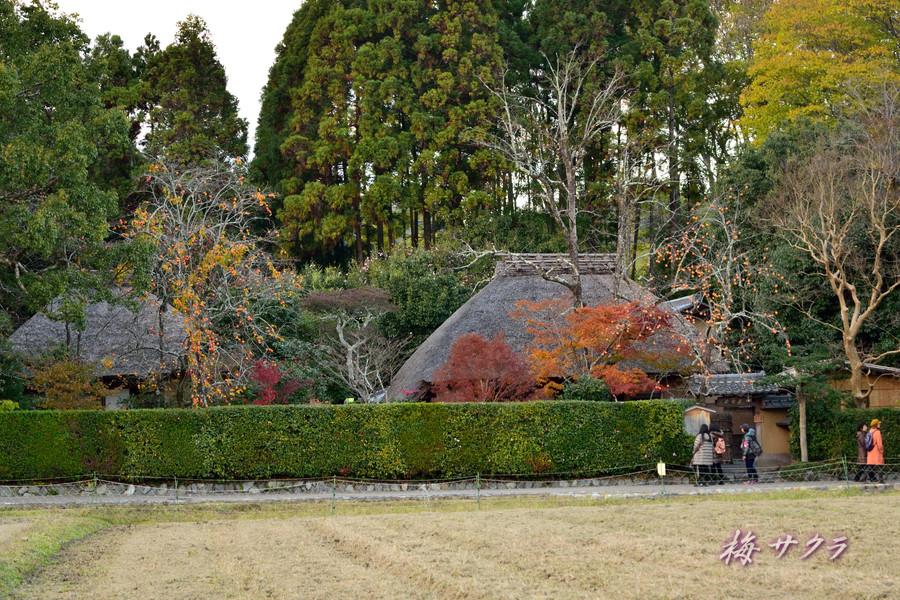 京都17(1)変更済
