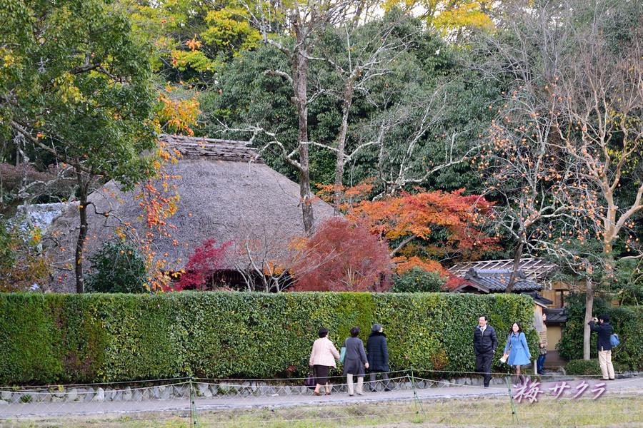 京都17(2)変更済