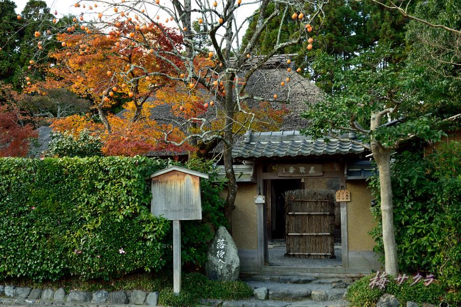 京都17(4)変更済