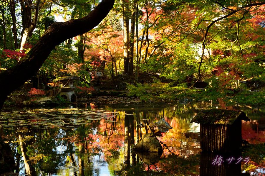 京都18(3)変更済