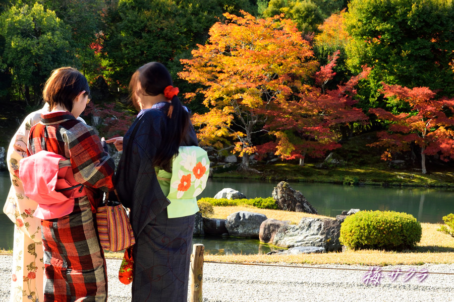 京都18(6)変更済