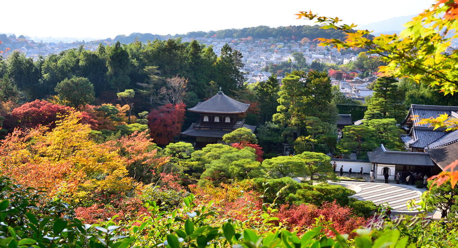 京都18(8)変更済