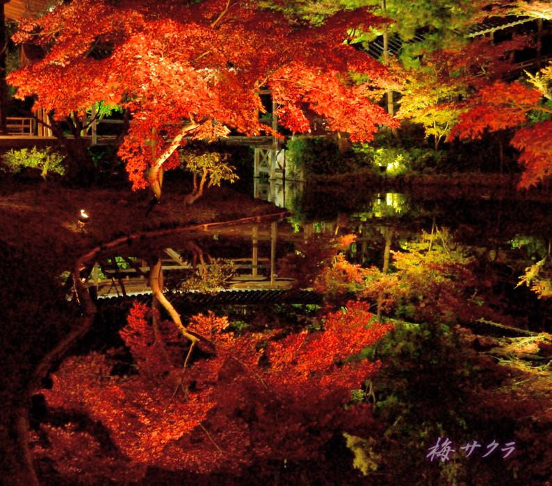 京都18(9変更済