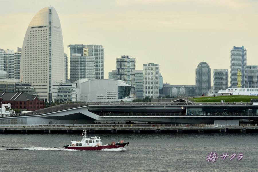 横浜(1)変更済