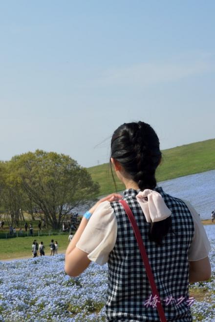ひたち海浜公園2(11-2)変更済