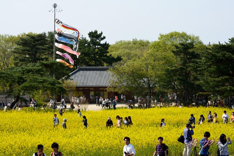 ひたち海浜公園3(2)変更済