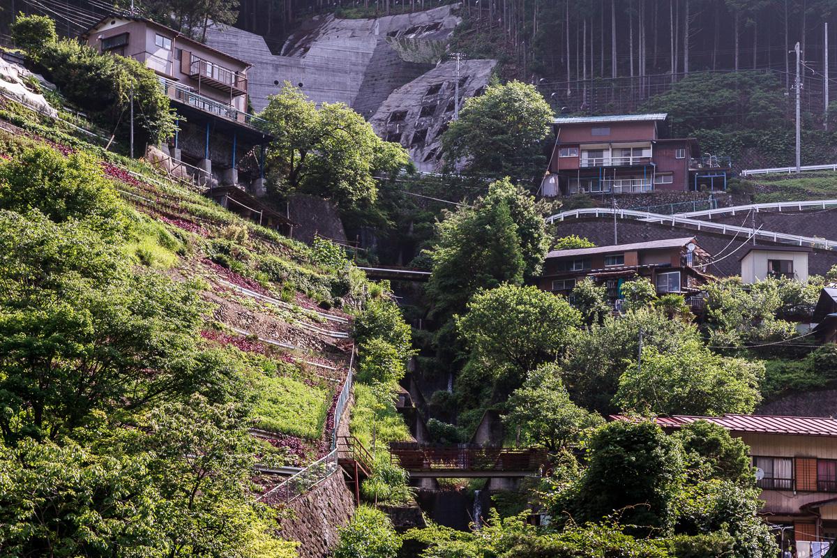 140623丹波山村 (1 - 1)-24
