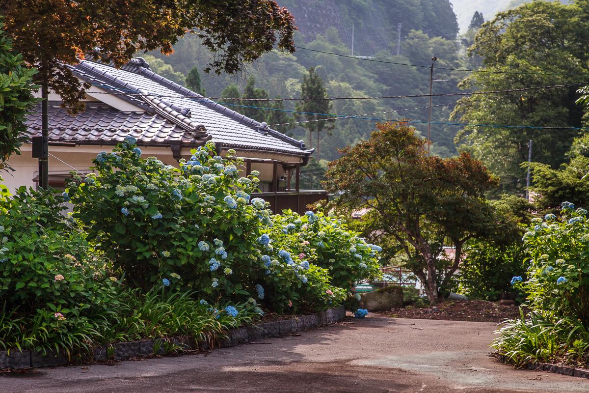 140623丹波山村 (1 - 1)-28