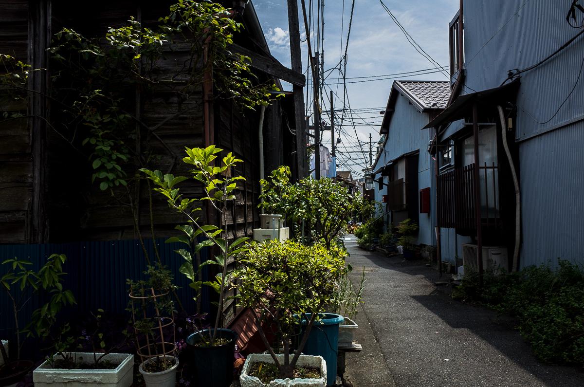 140813押上文花京島-1-43f