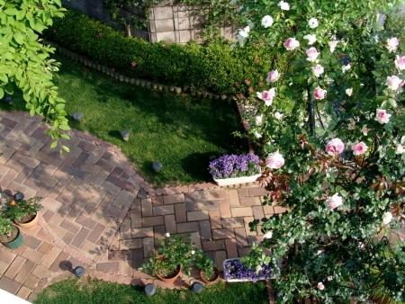 tnH26-05-31アーチのバラ (12)