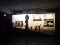 コンチキ号博物館7