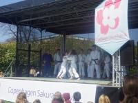 桜フェスティバル13