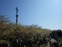 桜フェスティバル18