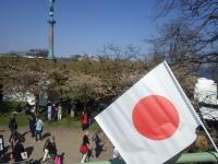 桜フェスティバル25