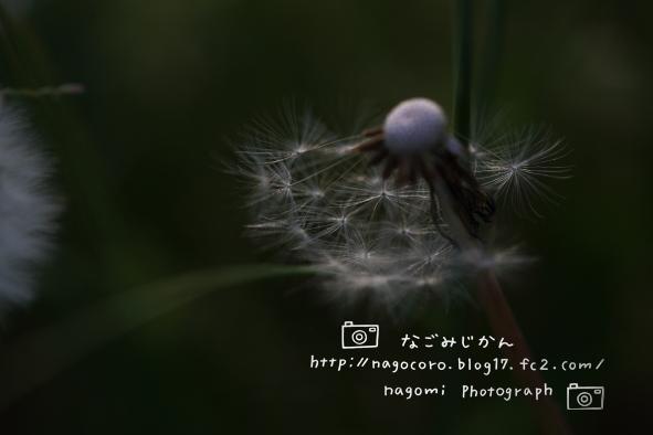 140701.jpg