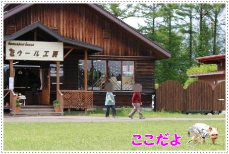0518小岩井農場-30
