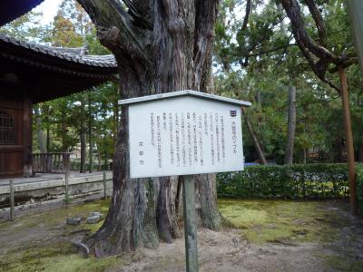 2014.1.13大徳寺山門-6