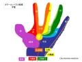 手掌とカラーコンパス