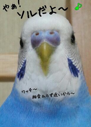 fc2_2014-02-24_23-56-09-699.jpg