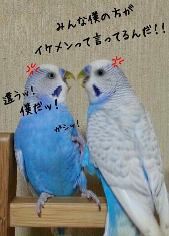 fc2_2014-07-26_23-36-59-379.jpg