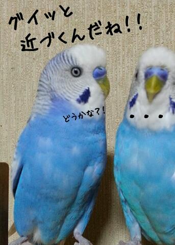 fc2_2014-08-29_23-20-57-984.jpg