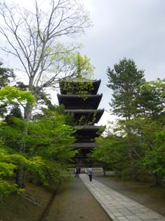 仁和寺の塔