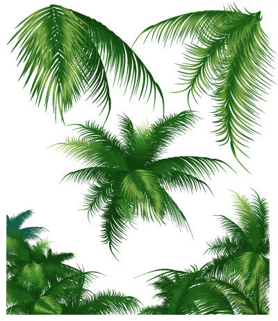 tropical-leaf-set1.jpg
