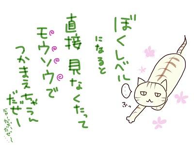IMG_4100.jpg