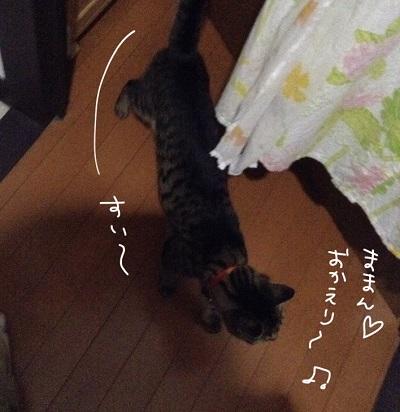 IMG_4420.jpg