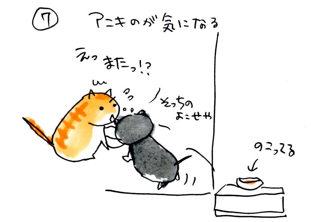 kougomeshi7.jpg