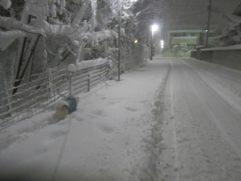 h26,2また大雪ー深夜2