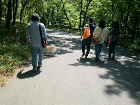 h26,5森林公園