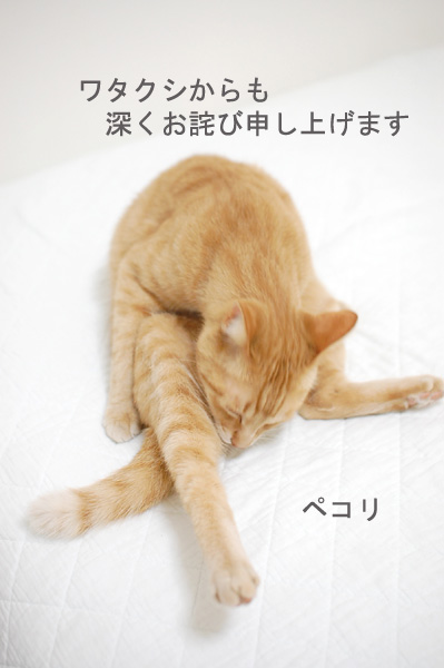 20140516_12.jpg