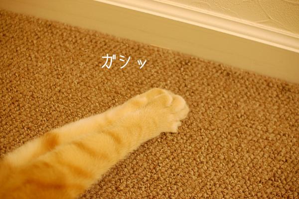 20140527_31.jpg