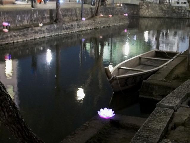 P3230117 花筏