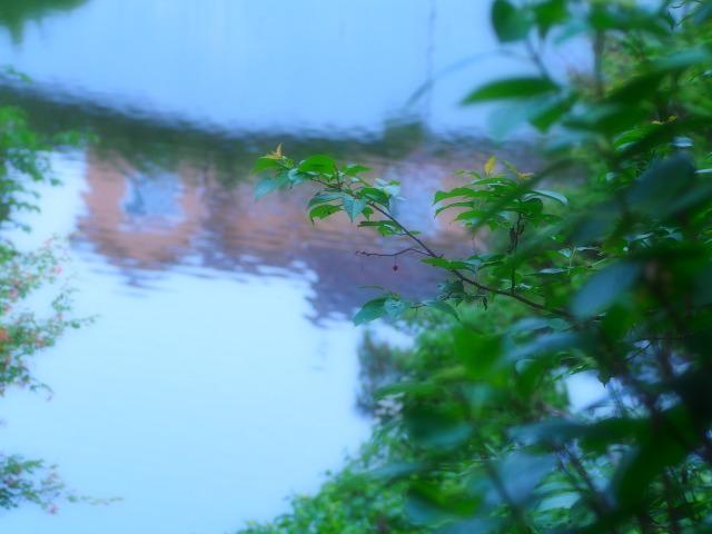 P5270112 湖面の家
