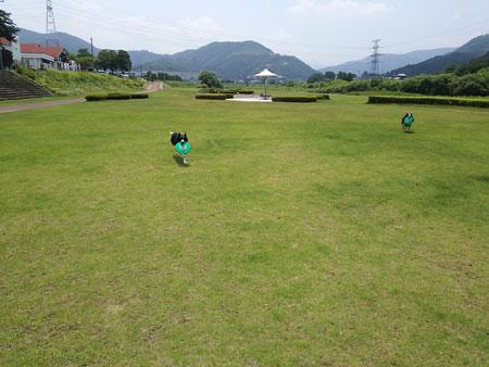 DSC_3935aquo2w45.jpg