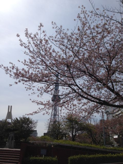 テレビ塔2