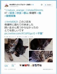 news213187_pho01.jpg