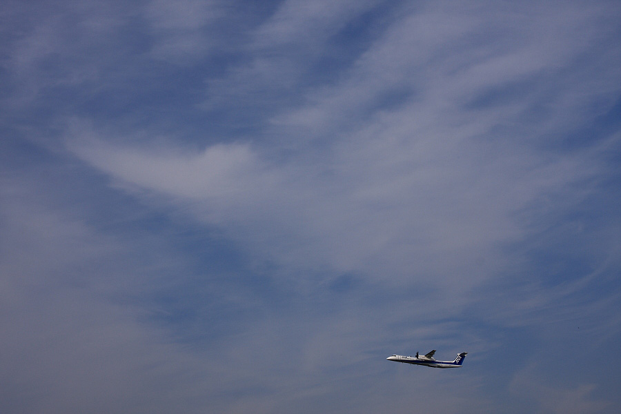 ANA WINGS DHC-8-402Q / ANA1643@RWY14Rエンド・猪名川土手