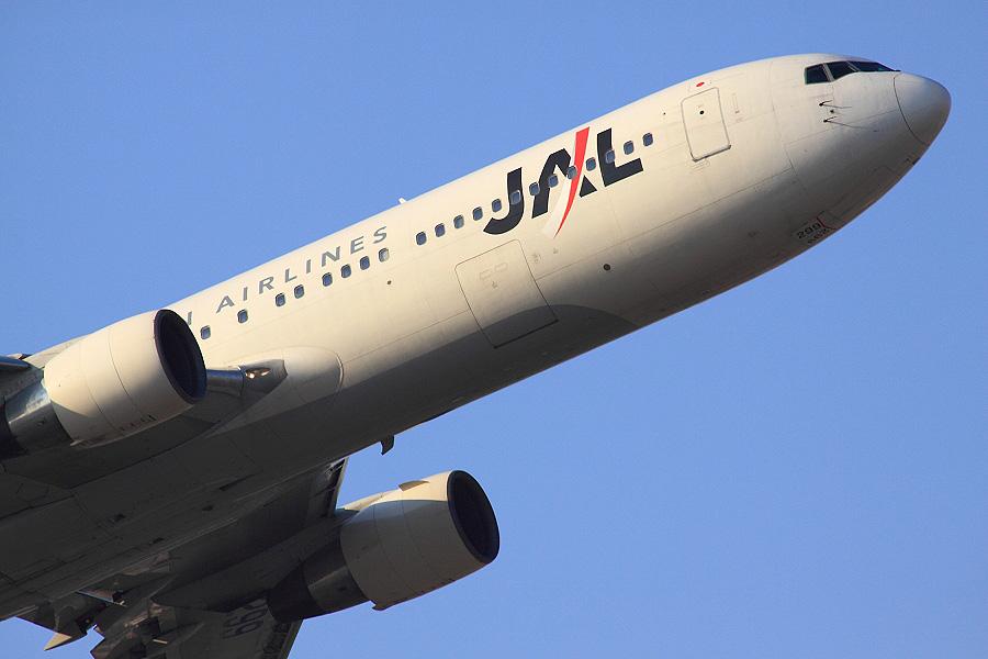 JAL B767-346 / JAL102 (JA8299)@下河原緑地展望デッキ