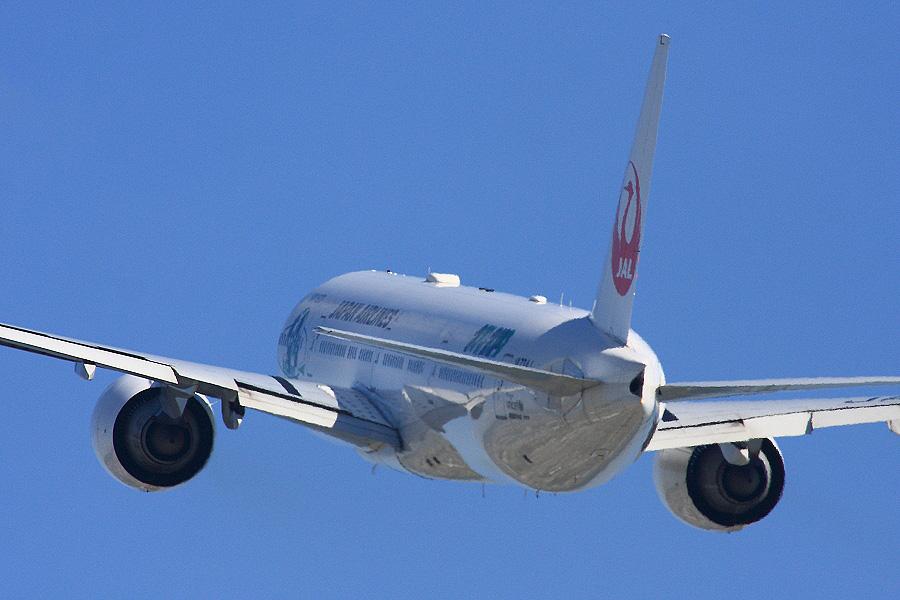 JAL B777-346ER / JAL3002 (JA734J)@RWY14Rエンド・猪名川土手