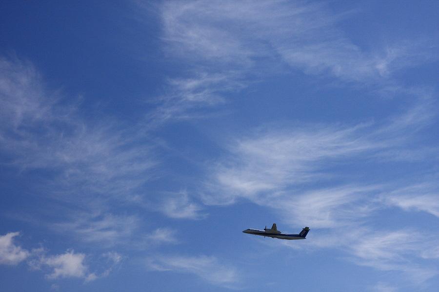 ANA WINGS DHC-8-402Q / ANA1651@RWY14Rエンド・猪名川土手