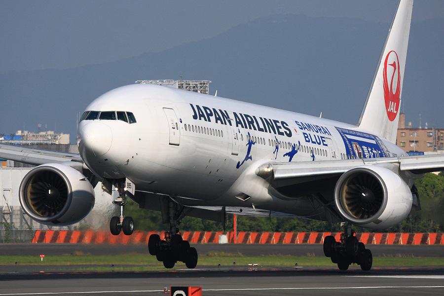 JAL B777-246 / JAL125 (JA8985)@伊丹スカイパーク