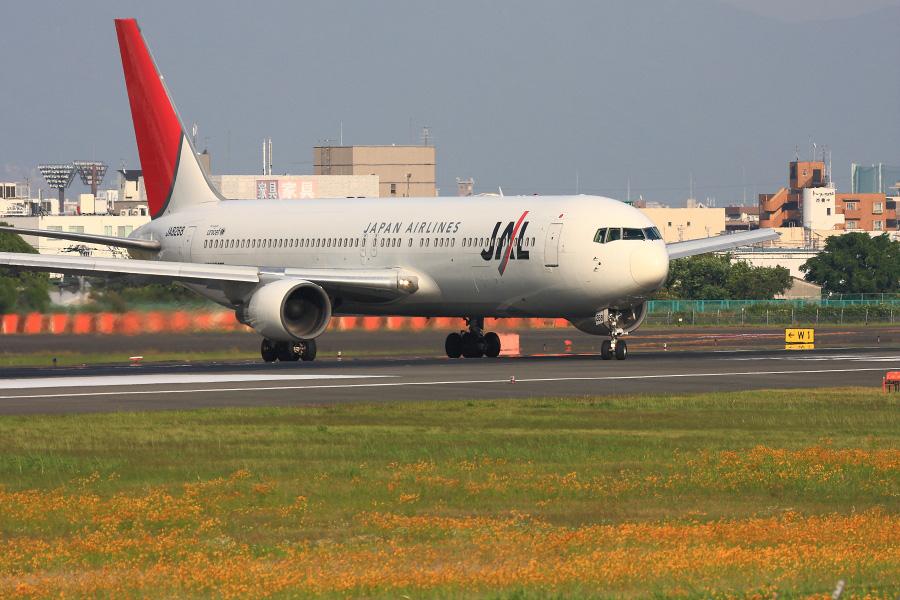 JAL B767-346 / JAL126 (JA8268)@伊丹スカイパーク